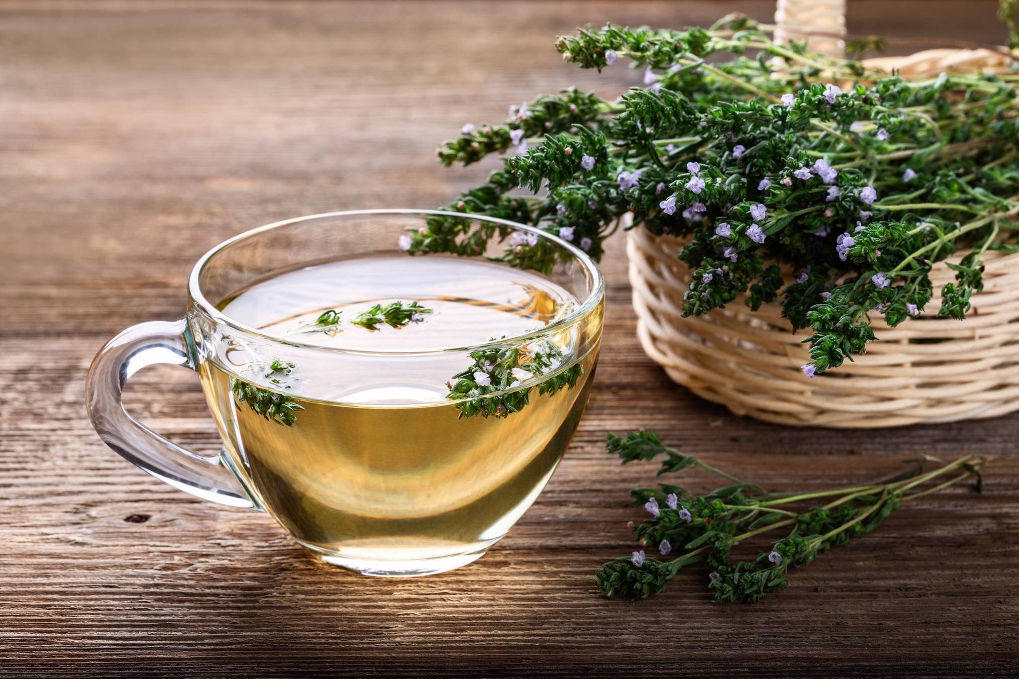 Розмарин: лечебные свойства, польза для здоровья и народные рецепты