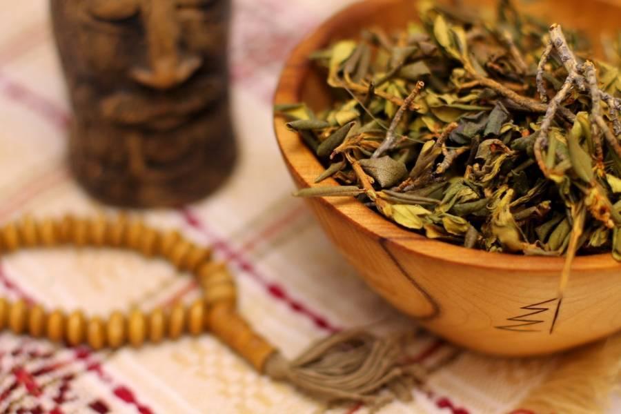 Чай саган-дайля: заваривание, польза и вред, отзывы