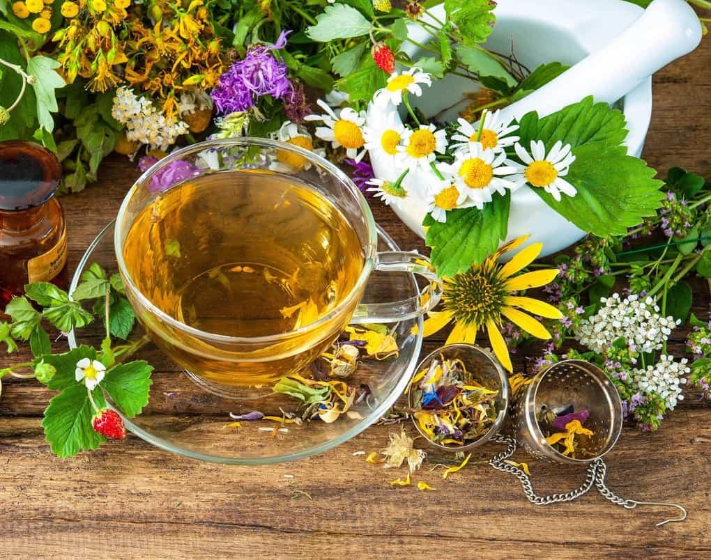 Какие травы спасают от кашля? эффективные рецепты при сухом и мокром кашле — будь здоров!