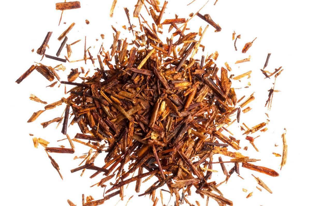 Чай ройбуш - польза и вред для здоровья