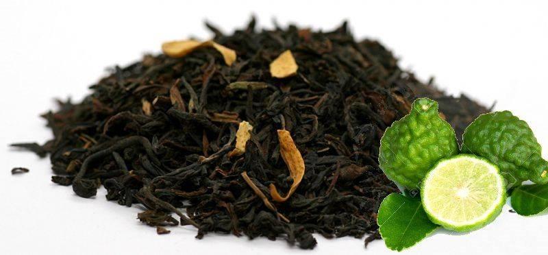 Чай с бергамотом - польза и вред для здоровья