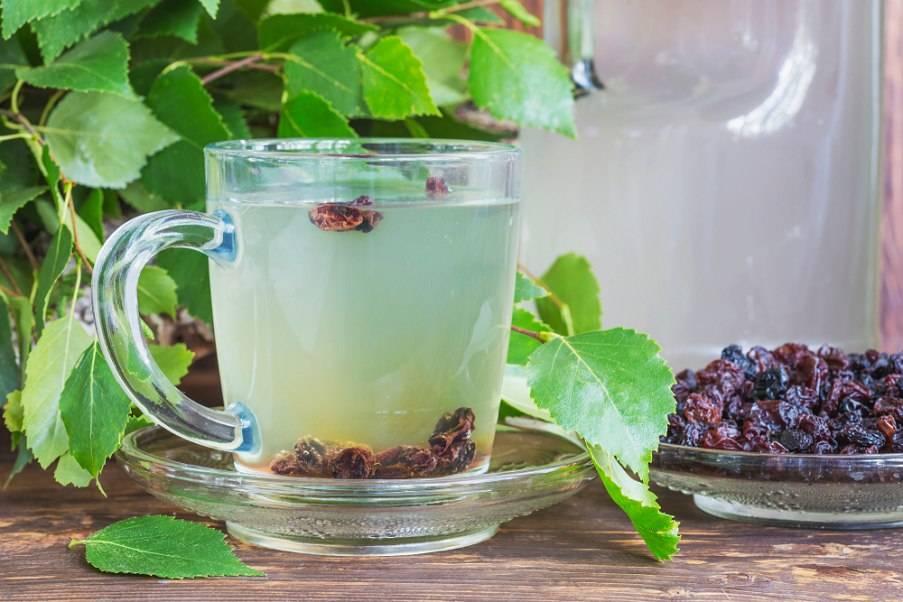 Как правильно сделать квас из березового сока: рецепт с изюмом