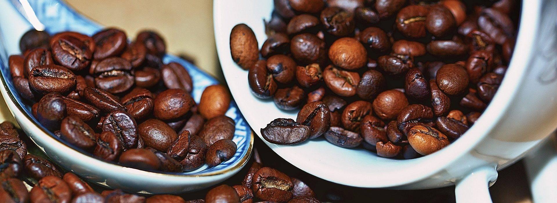 Арабика. аравийский кофе. сорта, виды, арабского кофе. где растет.?
