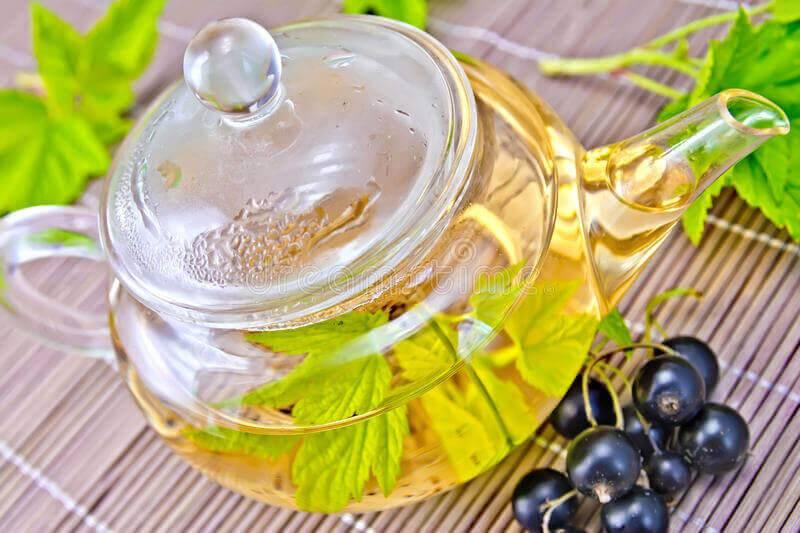 Чай из листьев смородины – польза и вред