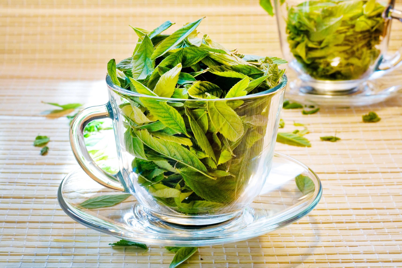 10 полезных свойств зеленого чая, доказанных наукой