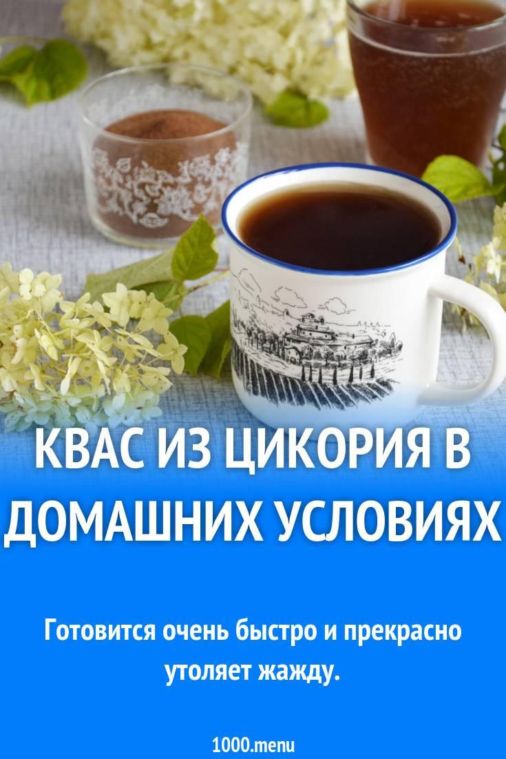 Квас из цикория: рецепты, как приготовить в домашних условиях