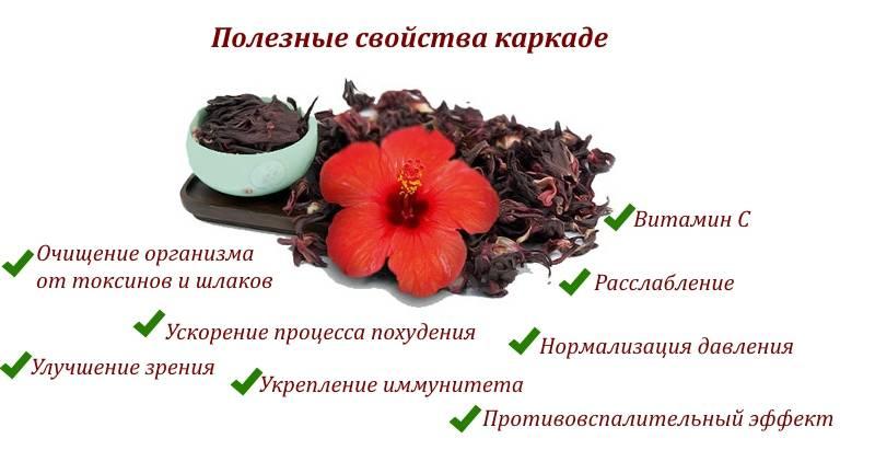 Чай каркаде: полезные свойства и противопоказания