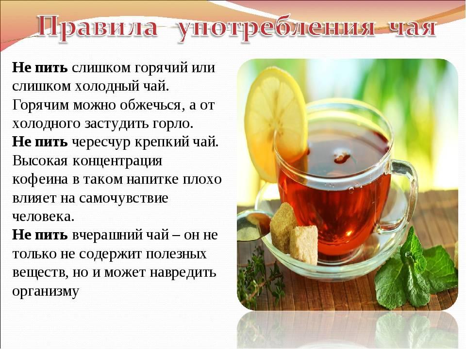 Польза и вред горячего чая | чайкофский