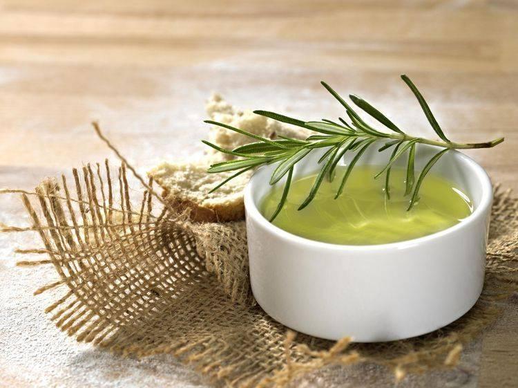 Розмарин – лечебные свойства и противопоказания, как применять в кулинарии