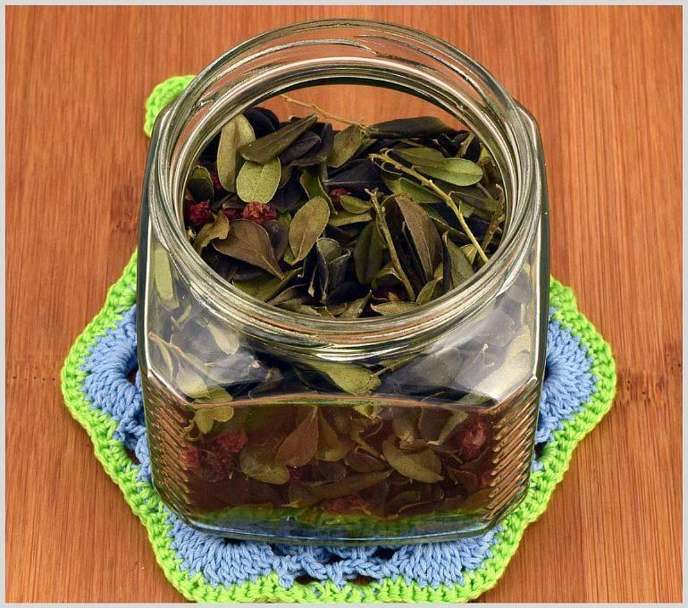 Чай из листьев черники — польза и вред   польза и вред