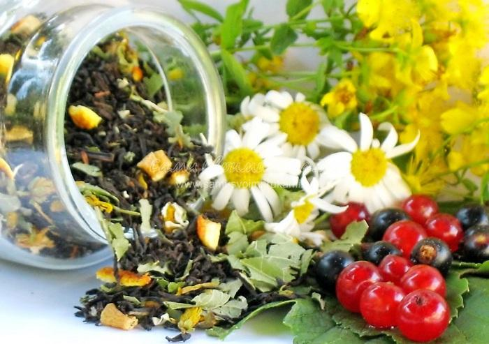 Успокоительные травы для нервной системы: сборы, чай