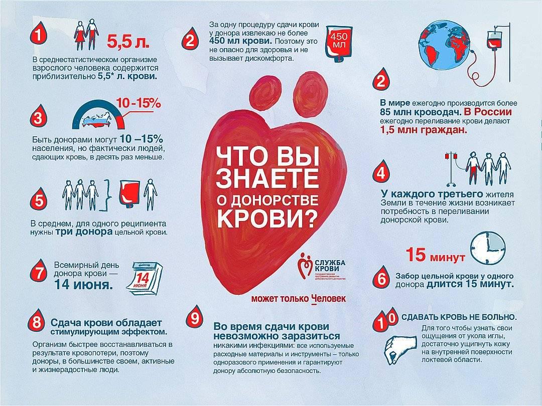 ✅ что нельзя перед сдачей крови донорам нельзя - денталюкс.su