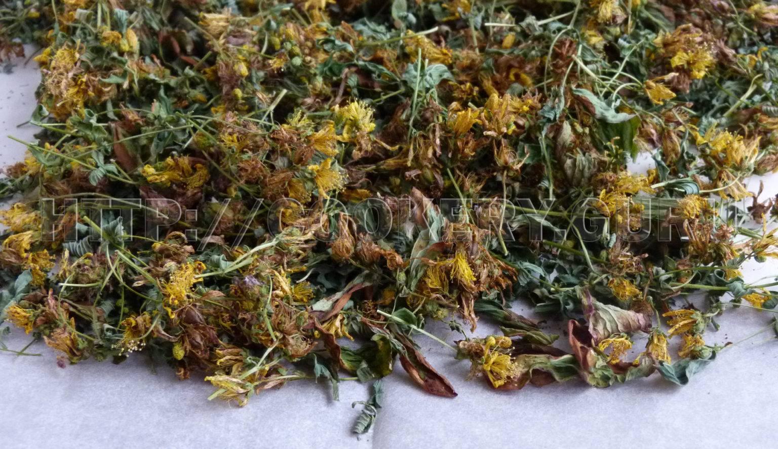 Лечебные свойства и противопоказания листьев земляники