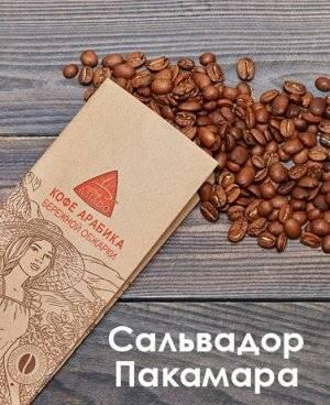 Все о сортах, вкусе и аромате кофе арабика