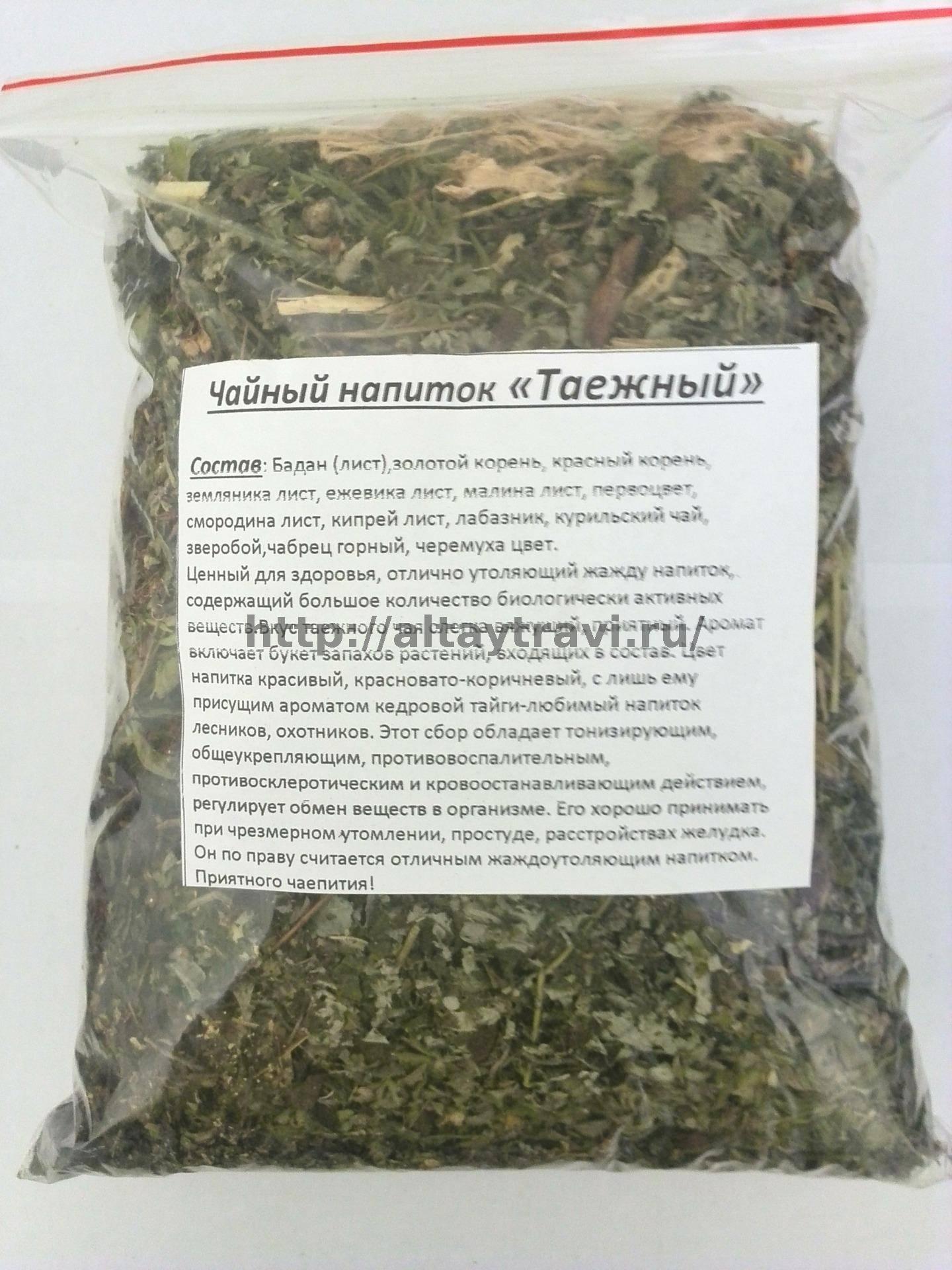 Курильский чай: полезные свойства и противопоказания