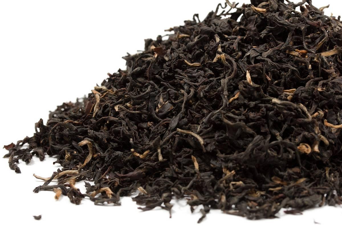 Чай ассам: особенности выращивания и производства, виды, правила заваривания