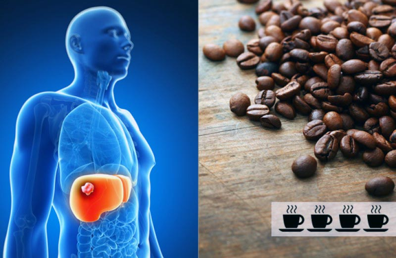 Кофе при гипертонии: влияние кофеина на организм, разъяснения врачей, польза и вред, совместимость с лекарствами от давления