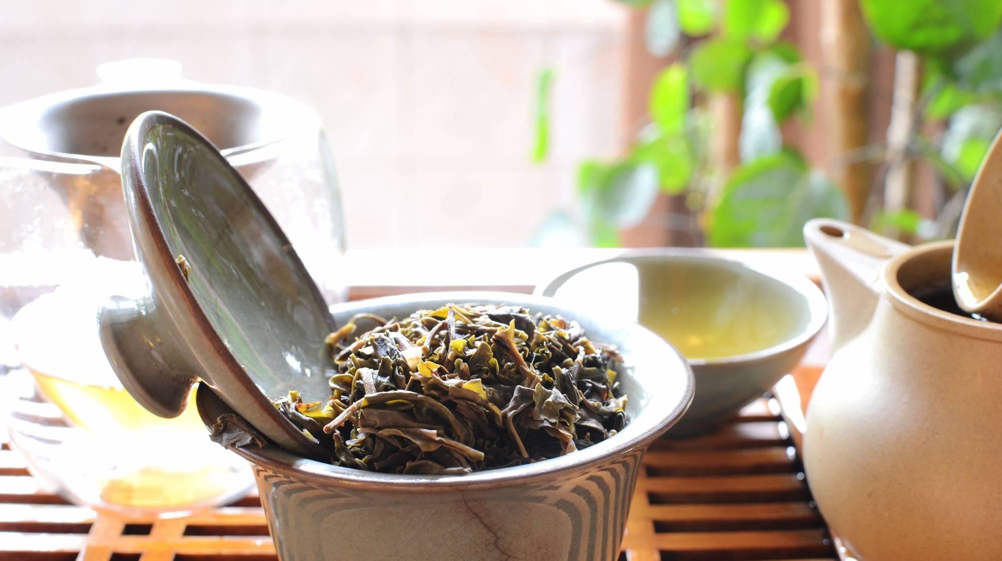 Чай из целебного растения китайского лимонника
