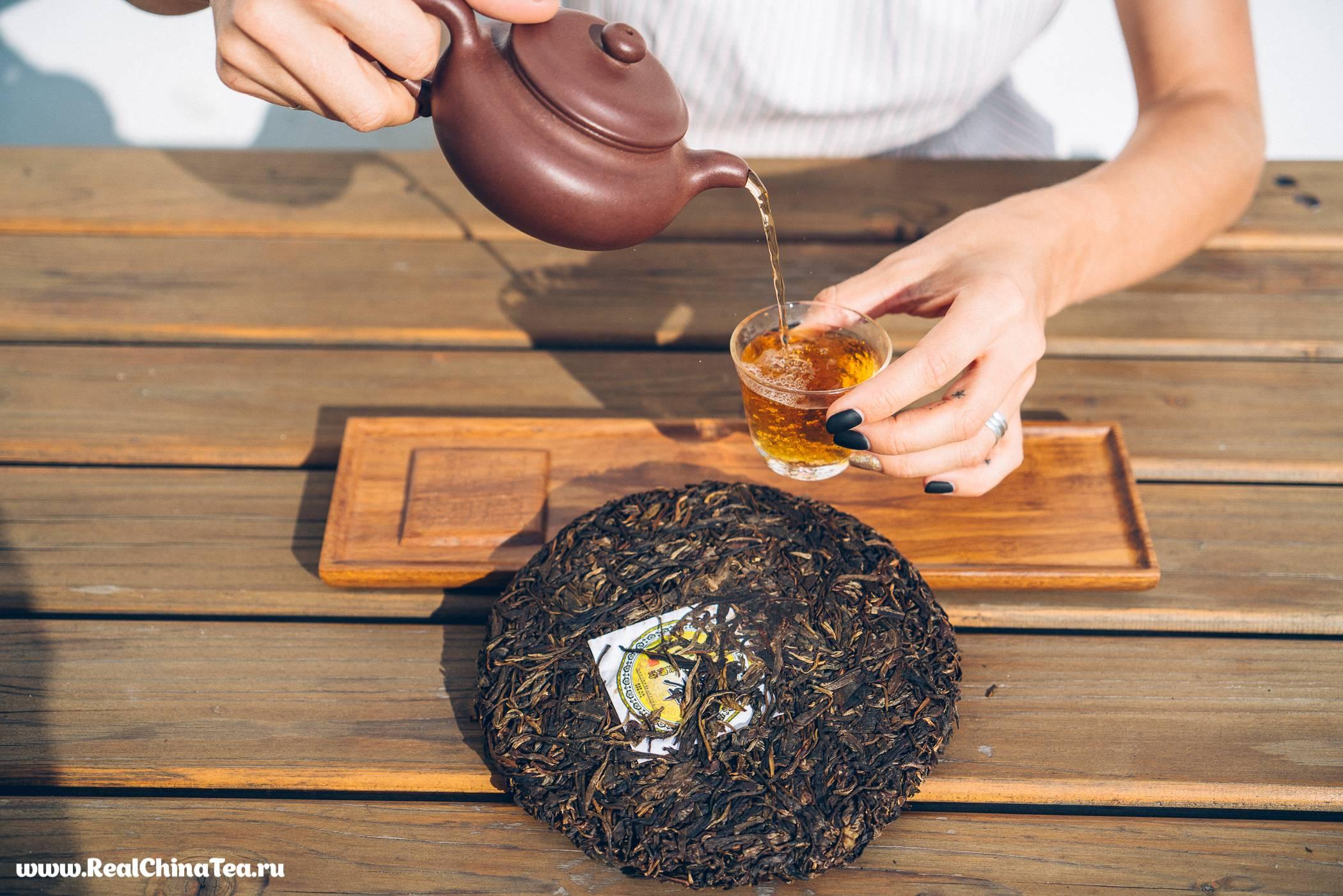 О чае шен пуэр: от сбора листьев до заваривания с описанием вкуса, цвета, аромата