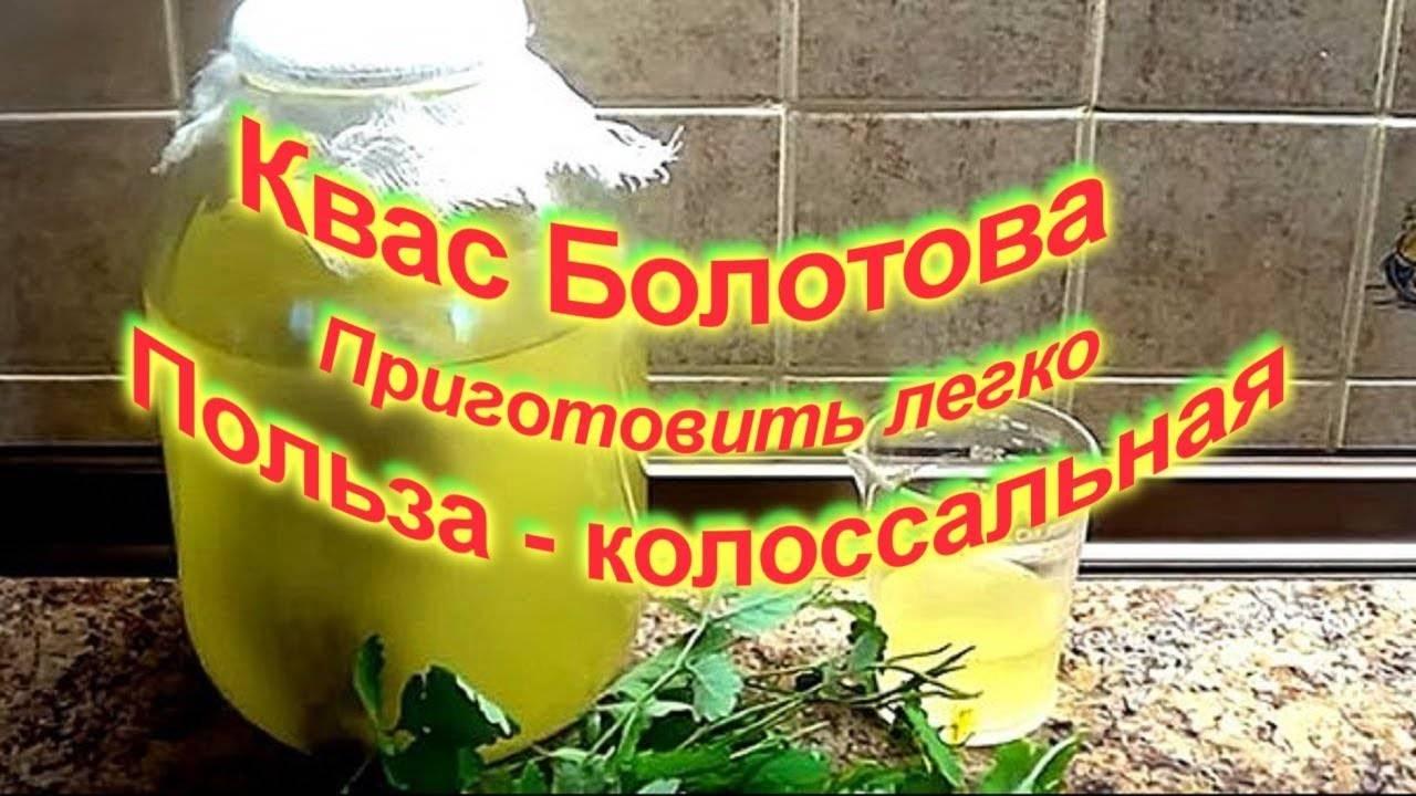 Квас болотова на чистотеле: рецепты, отзывы врачей, лечебные свойства, как приготовить
