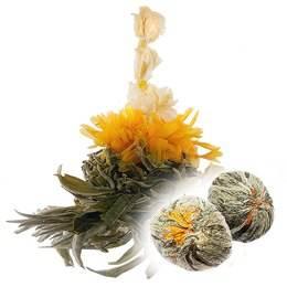 Синий чай: полезные свойства и правильное употребление удивительного чая, рецепты заваривания   здорова и красива