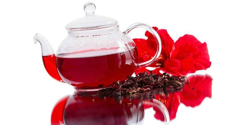 «напиток фараонов» — чай из гибискуса. где его взять и как приготовить?