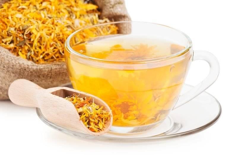 Как заварить зверобой для чая, польза и вред, как пить, травяные сборы