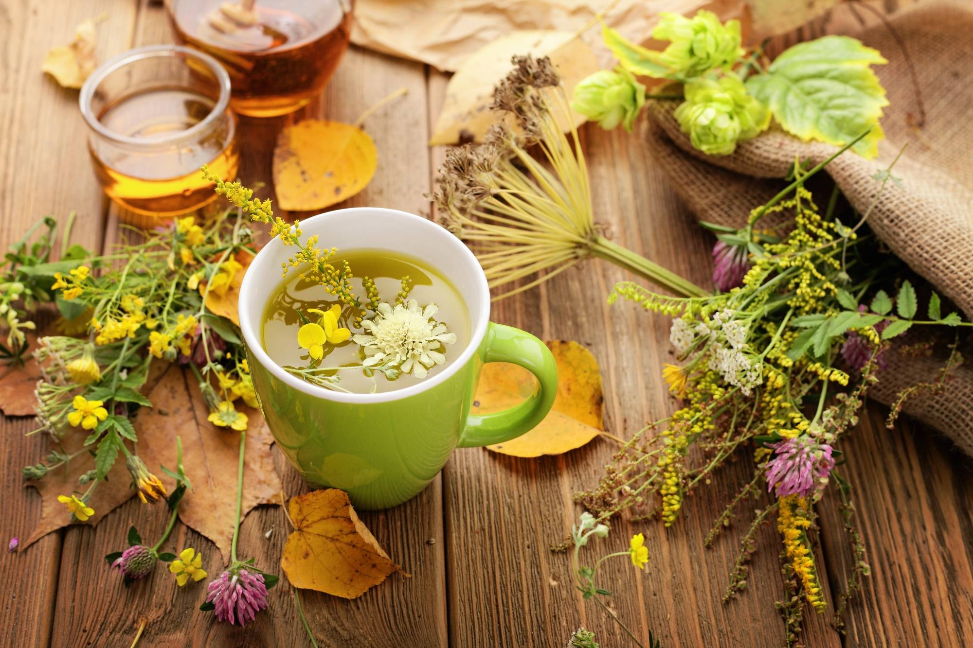 Полезные свойства липового чая и противопоказания для его употребления