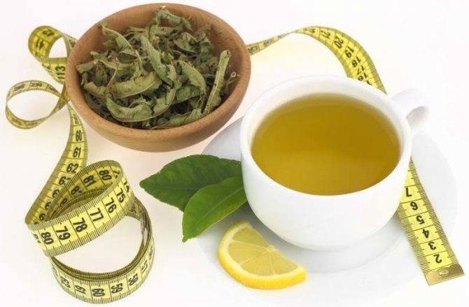Чай для похудения: какой лучше в аптеках, отзывы, названия, как пить