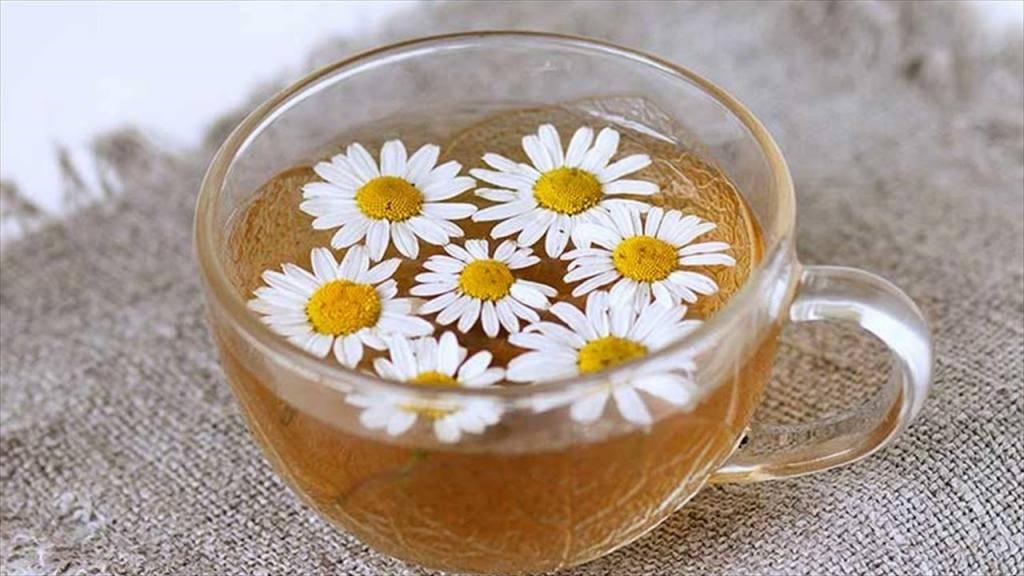 Ромашка: лечебные свойства, польза для взрослых и детей + рецепты целебных отваров и настоек