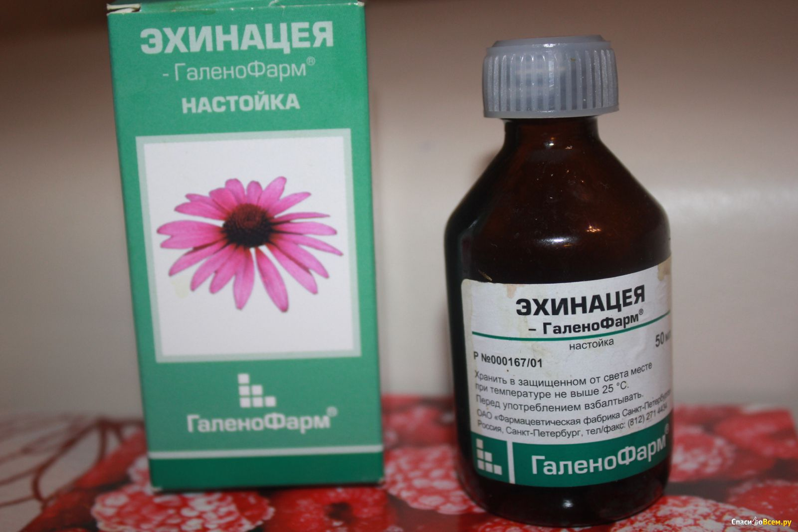 Как принимать настойку эхинацеи для повышения иммунитета?