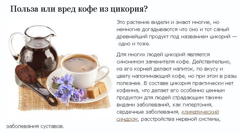 Что полезнее? кофе или цикорий? | компетентно о здоровье на ilive