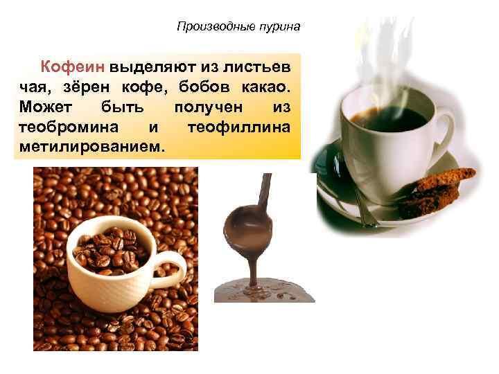 Состав кофейного зерна