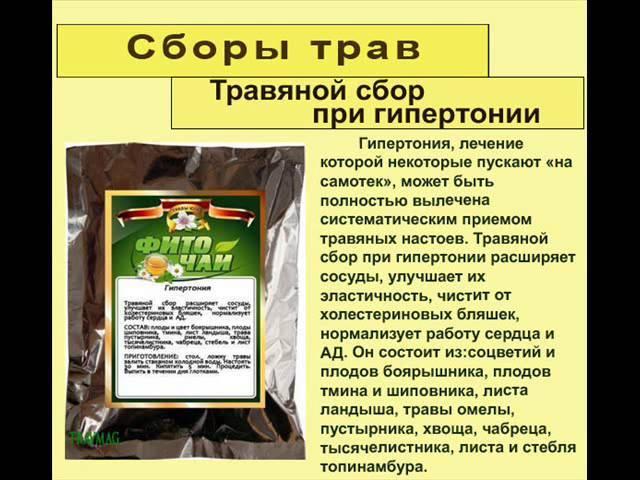 Топ 6 чаев для эффективного очищения кишечника