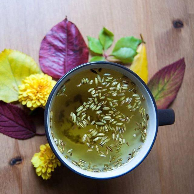 Чай с фенхелем (в том числе для кормящих мам): полезные свойства, применение и прочее medistok.ru - жизнь без болезней и лекарств