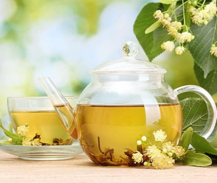 Польза липового чая. применение липы в народной медицине и косметологии