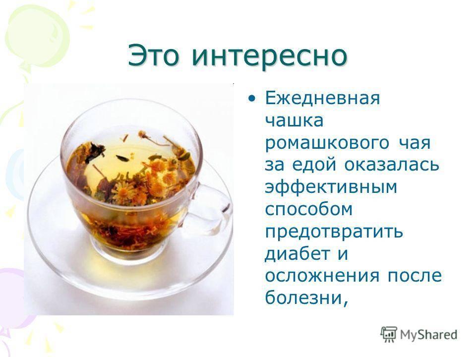Польза и вред ромашкового чая и его свойства для женщин