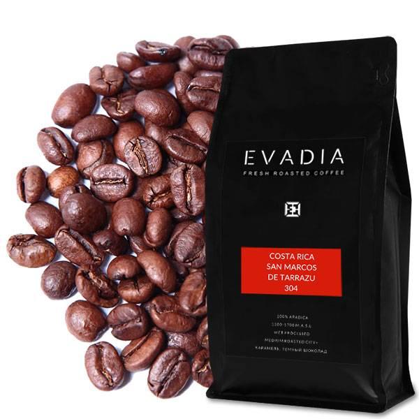 Кофе в зернах: рейтинг лучшего зернового напитка, самые вкусные сорта