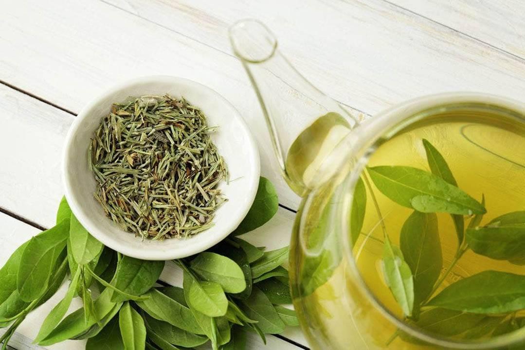 Жасминовый чай – чем полезен и как заваривать