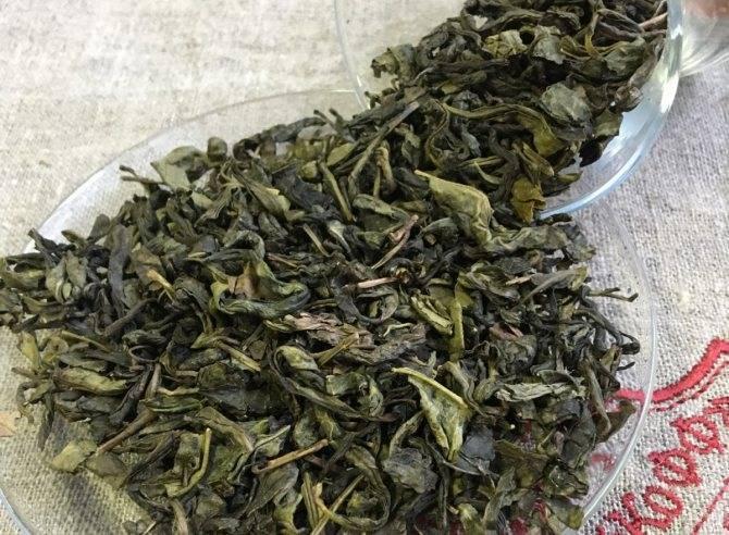 Саусеп чай польза и вред