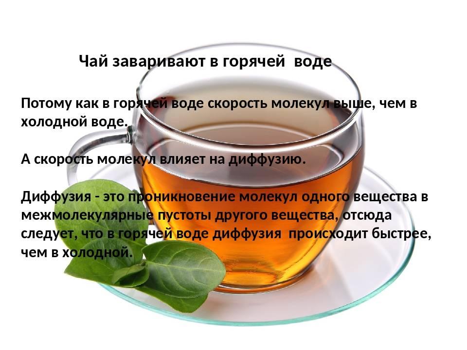Как правильно заварить и пить зелёный чай   здоровье в дом