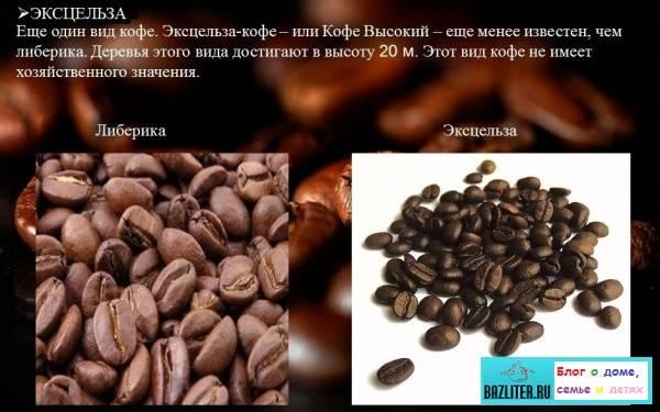 Характеристика филиппинского кофе