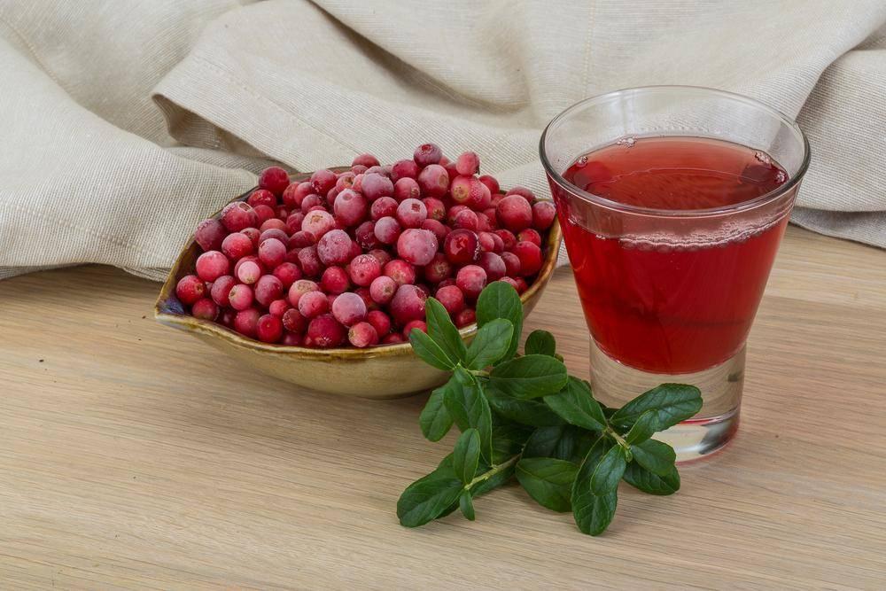 Брусничный чай и его польза для организма