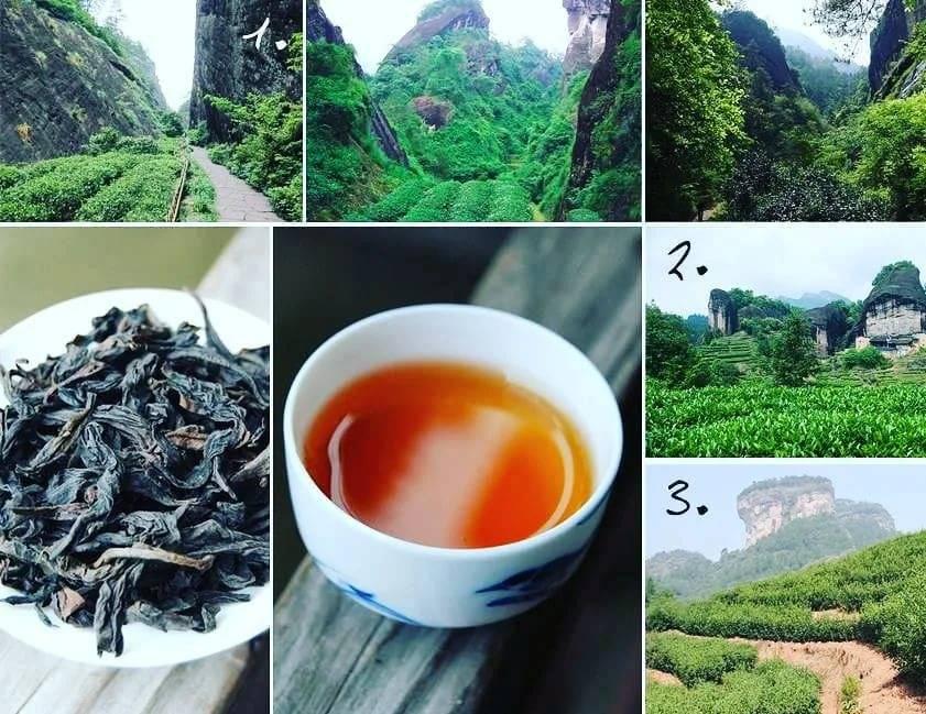 Китайский чай - виды, полезные свойства, цены