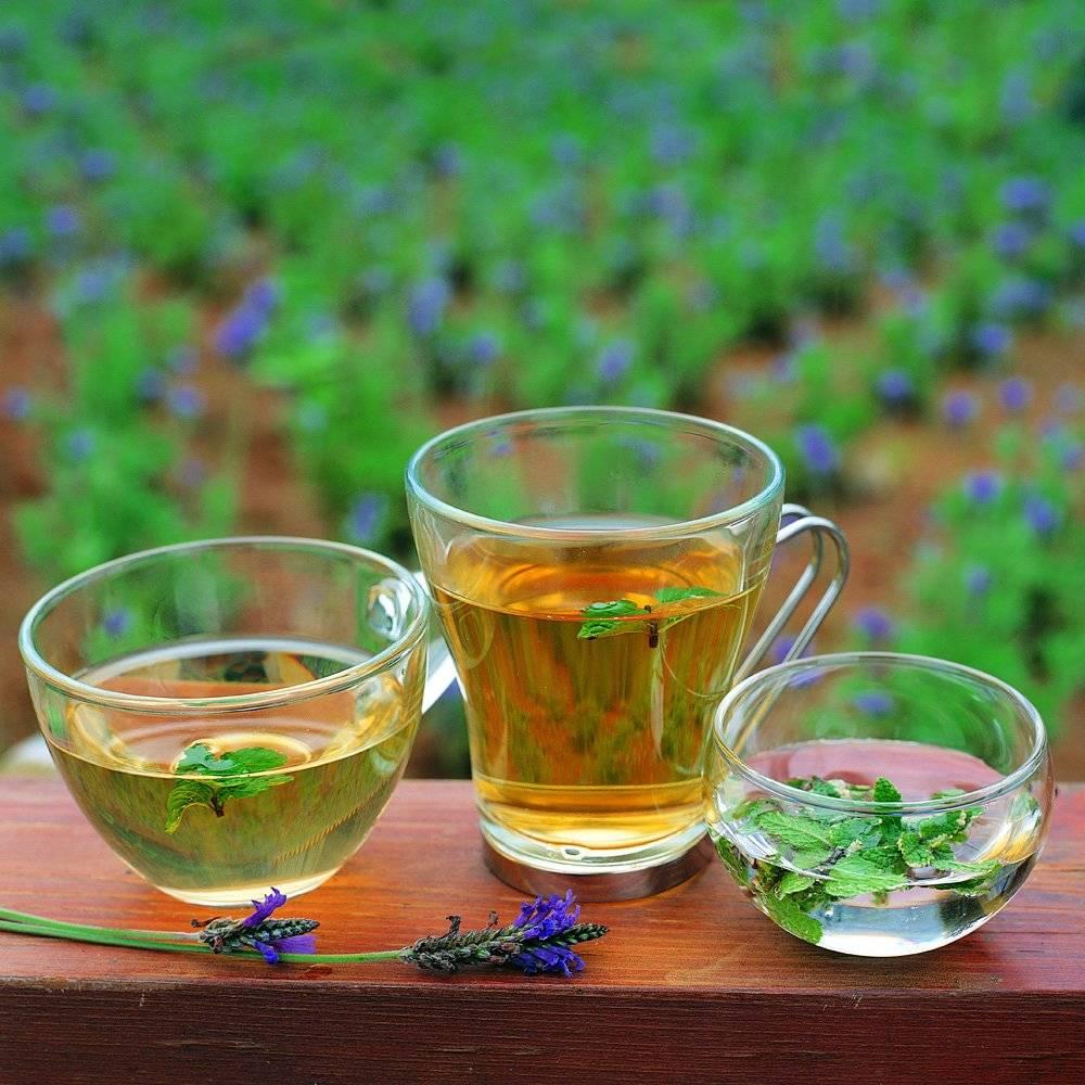 Чай для похудения из трав в домашних условиях | похудение тут