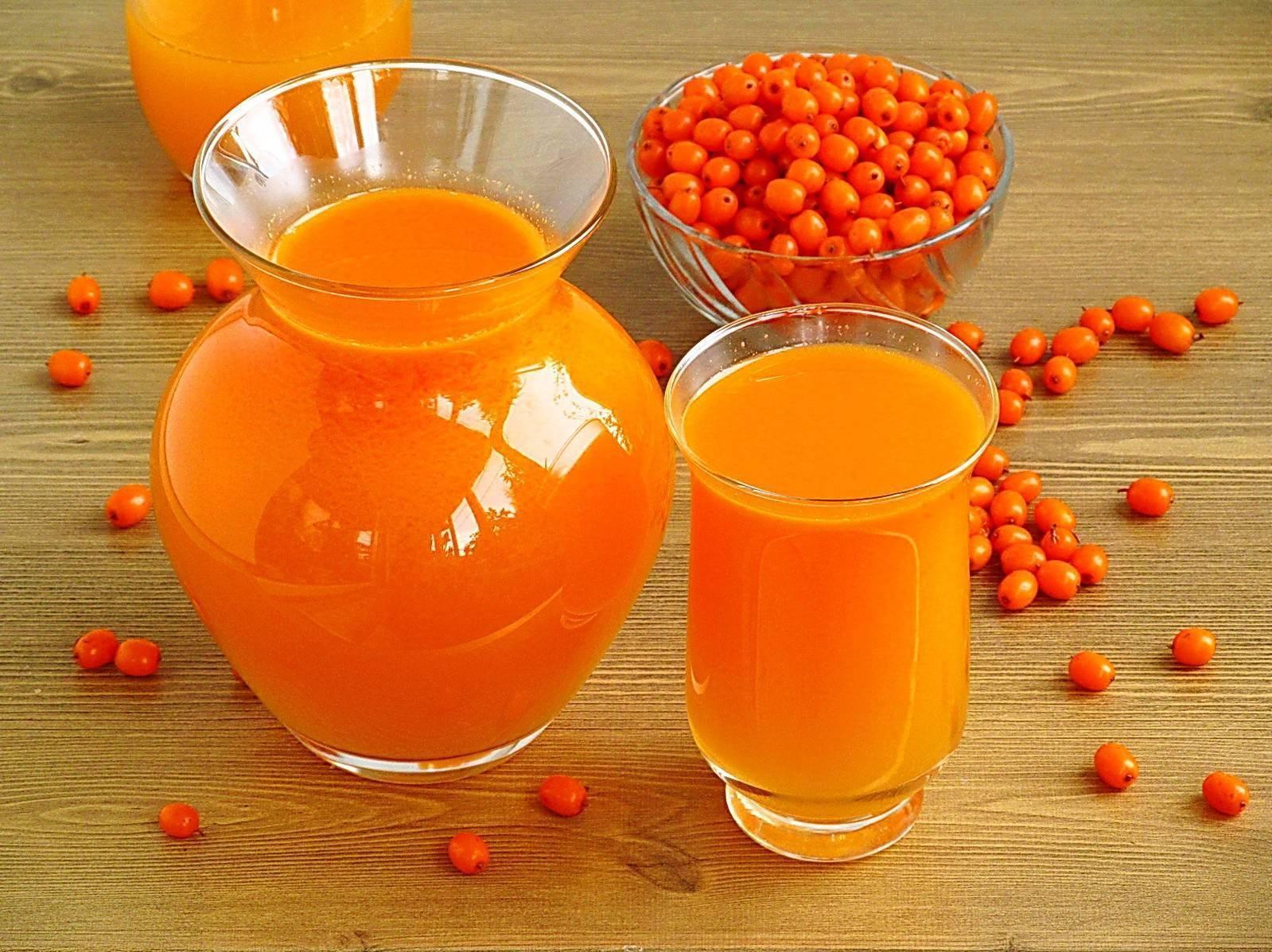 Морс из облепихи - полезные свойства и лучшие рецепты домашнего напитка