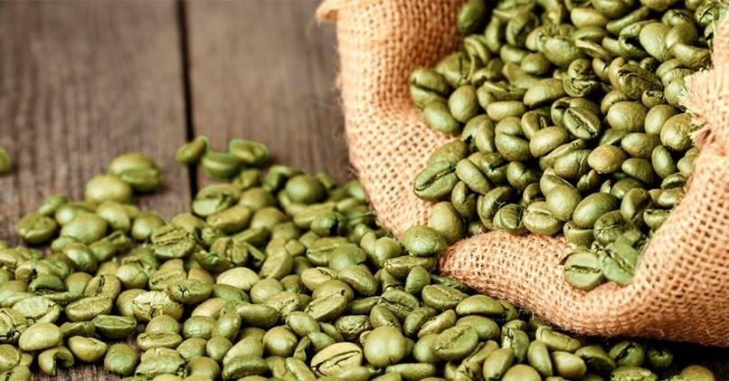 Зеленый кофе – польза и вред для организма человека
