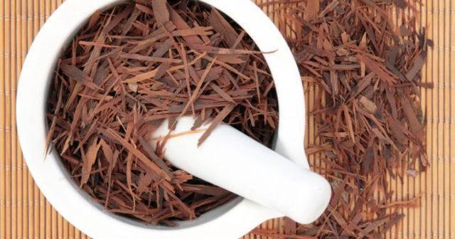 Чай лапачо: полезные свойства и противопоказания