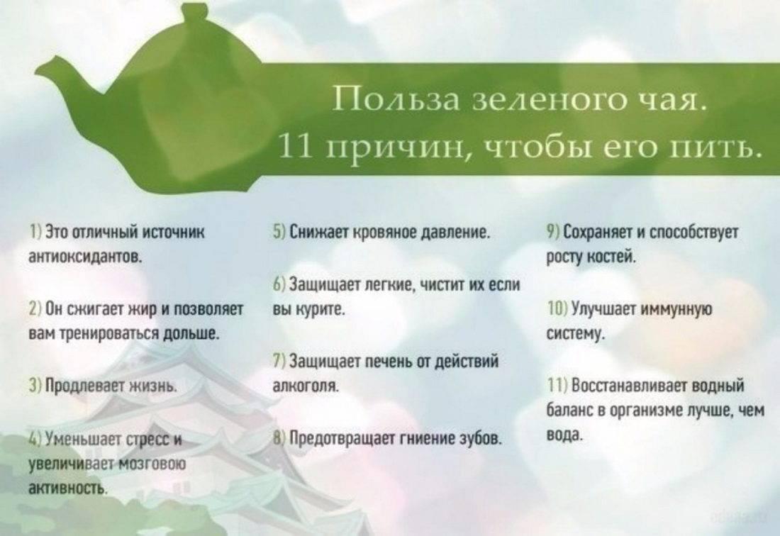 Диета на зеленом чае для похудения: меню и отзывы | диеты и рецепты