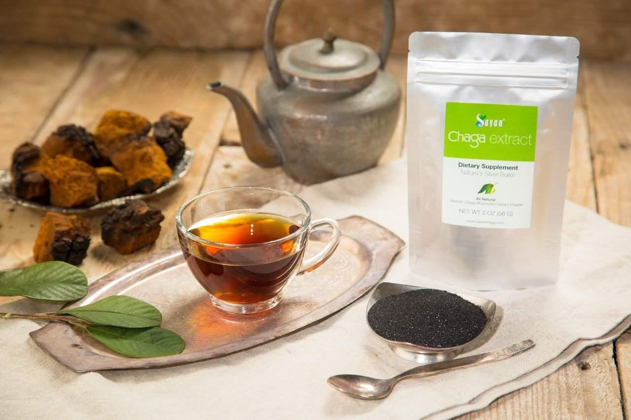 Чага чай лечебные свойства